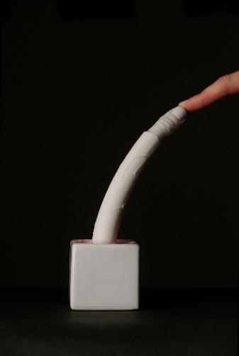 silicone, plaster, ceramic    2012